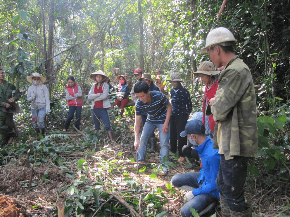 Bo Hon forest