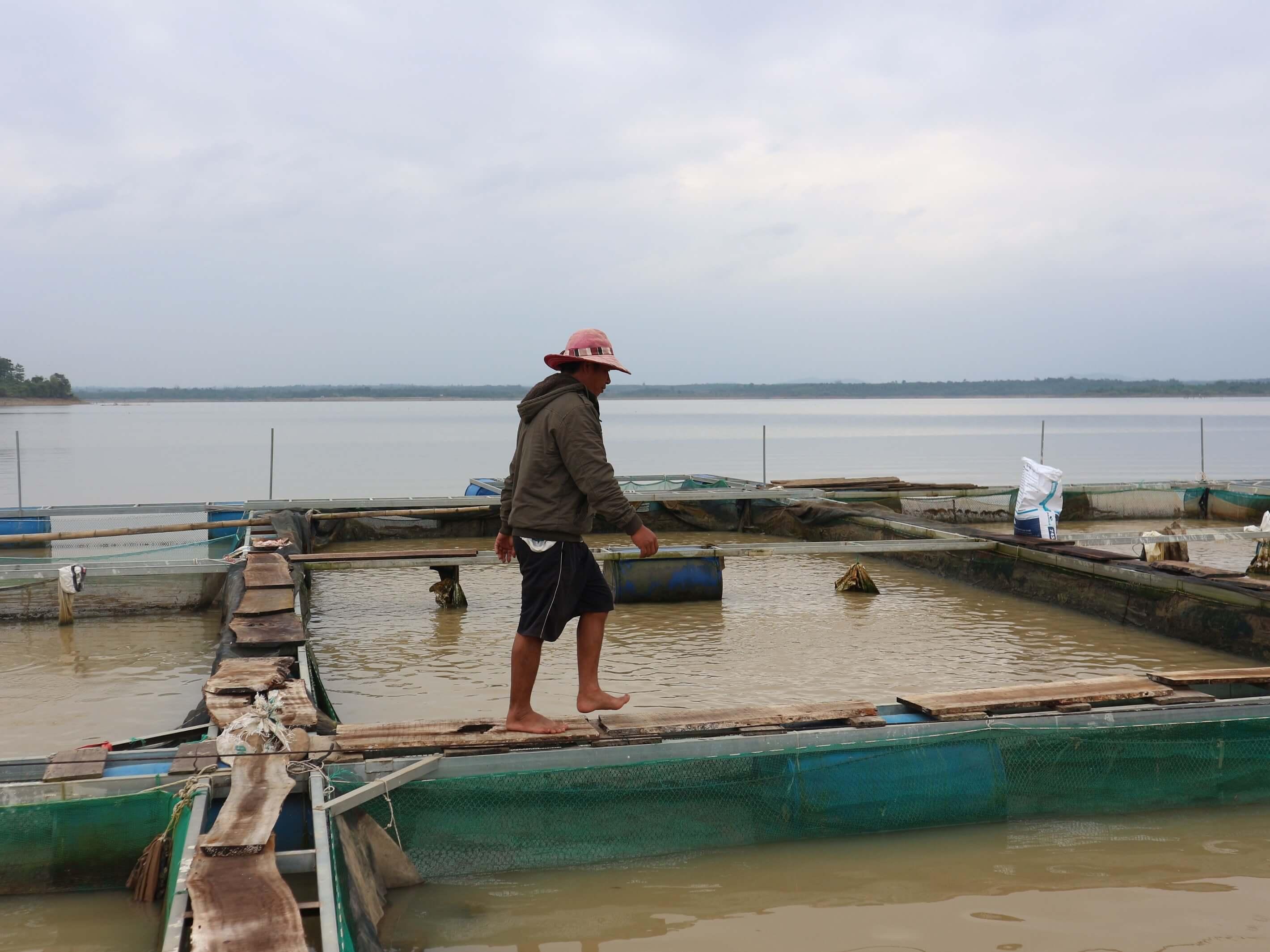 Thúc đẩy đồng quản lý nguồn lợi thủy sản trên lưu vực sông Sêrêpôk: Bài học từ một số mô hình thí điểm