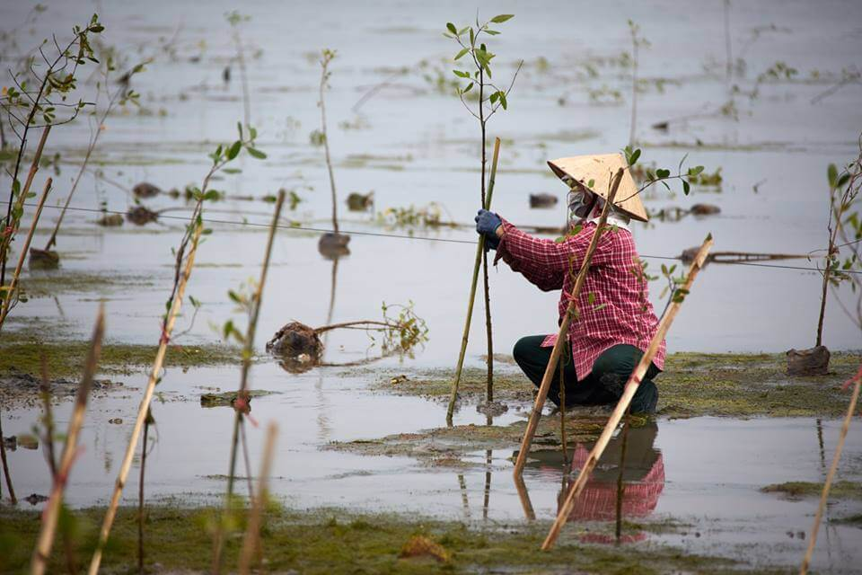 Women, EbA, and flood resilience in Centre Viet Nam